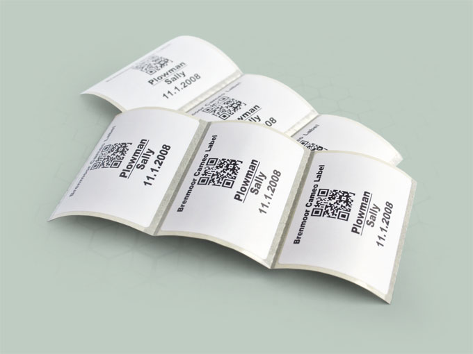 Brenmoor CAMEO labels for hospital ward and laboratory use